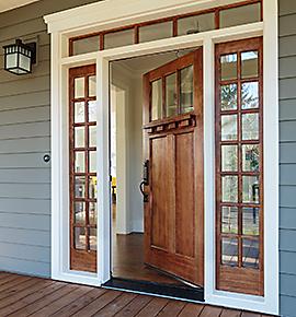 Puertas y aleros construcci n for Puertas de acceso principal
